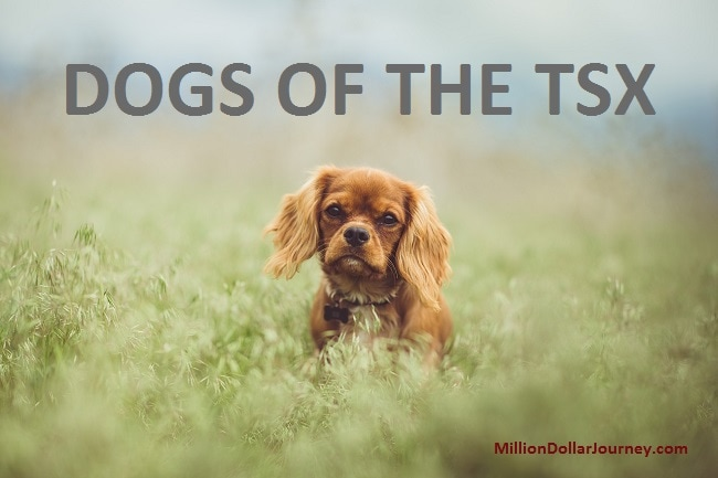 dogs of the tsx